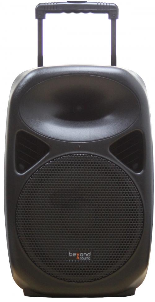 Beyond Acoustic RX12 BlueTooth